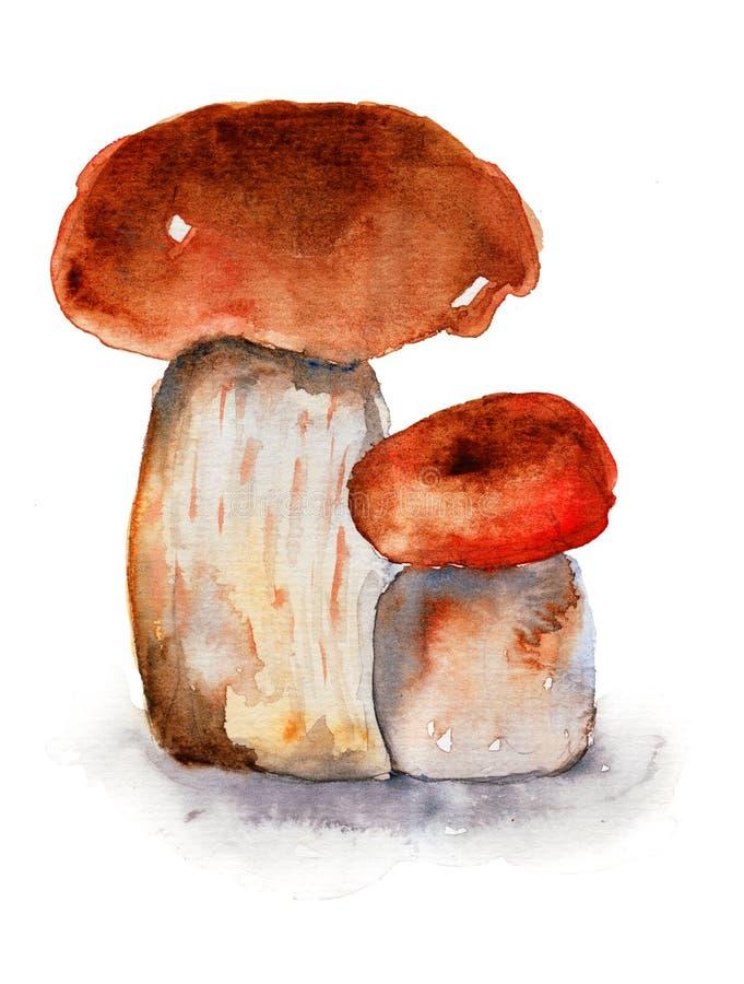 Download Mushrooms stock illustration. Image of shadow, mushroom - 30407086