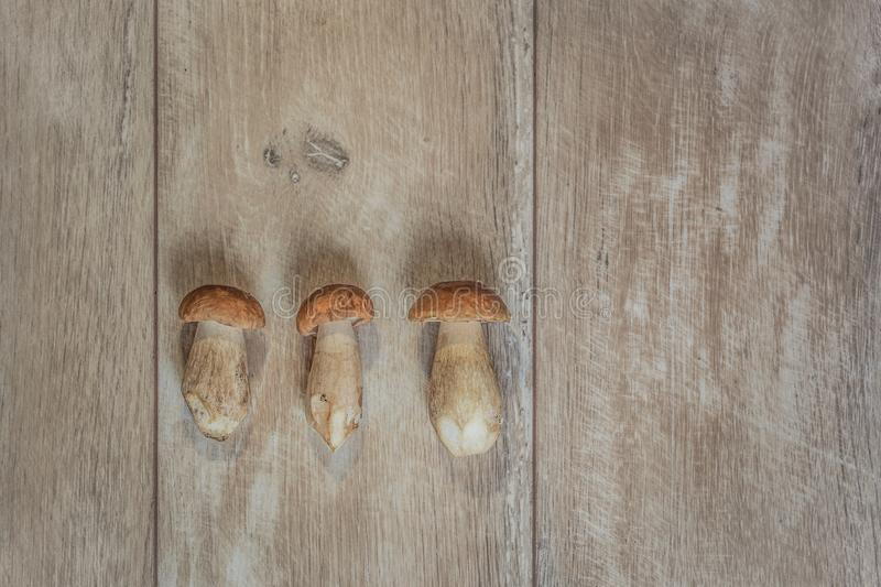 Mushrooms on wooden table royalty free stock photography