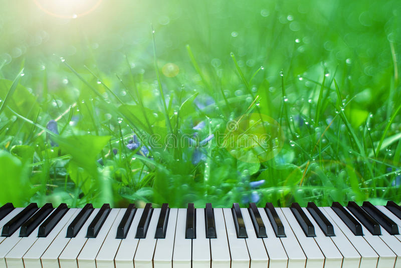 The music of nature. piano keys on a background of nature stock photos