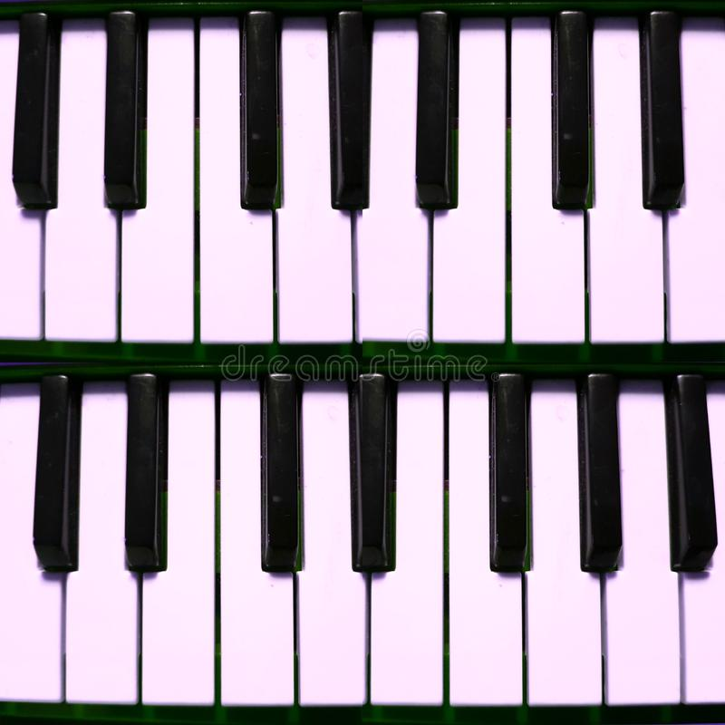 Pink light reflection on the keys of a musical keyboard, background and texture. Music and sound, melody and harmony, used in different styles and musical genres stock photos