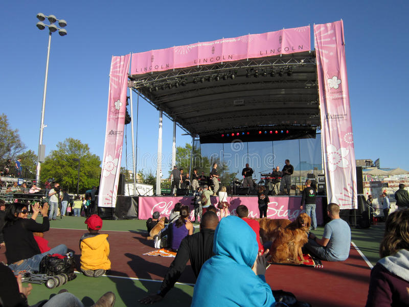 Music Stage at the Cherry Blossom Festival