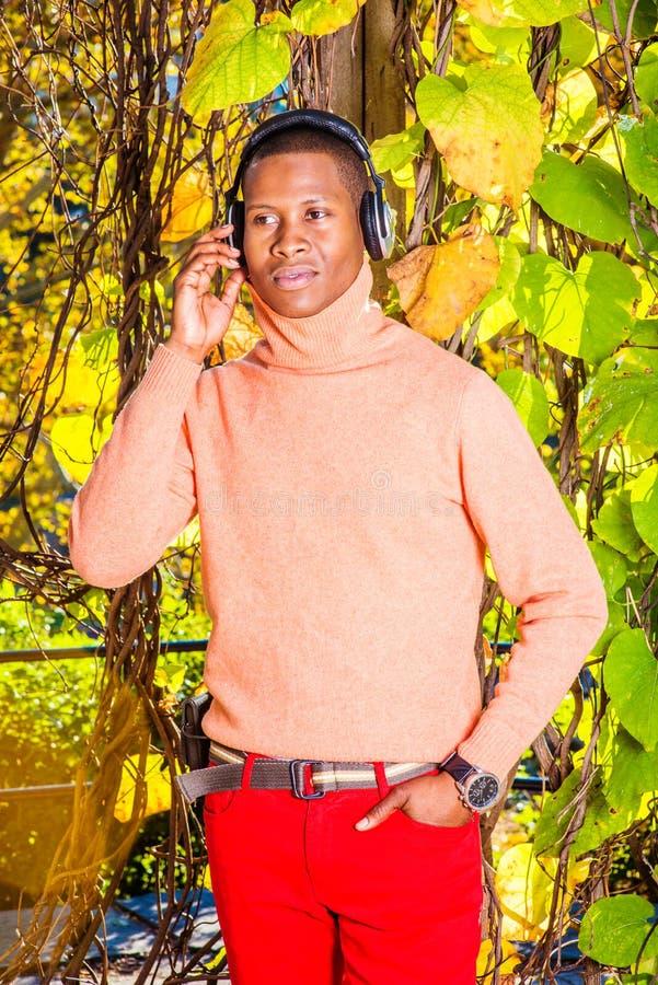 Musica d'ascolto del giovane uomo afroamericano in Central Park, nuovo fotografia stock libera da diritti
