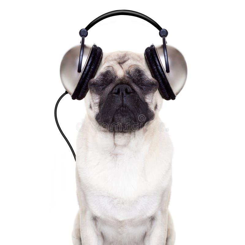 Musica del cane fotografie stock libere da diritti
