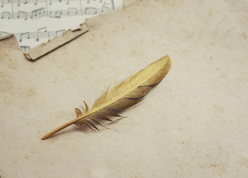 Musical conceptual composition of the symbol of the golden feather of a bird and background music of old yellowed paper with notes. Conceptual composition of the royalty free stock photo