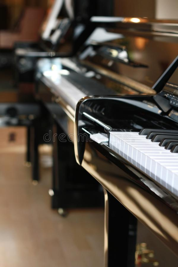 Musical instrument 15 royalty free stock photography