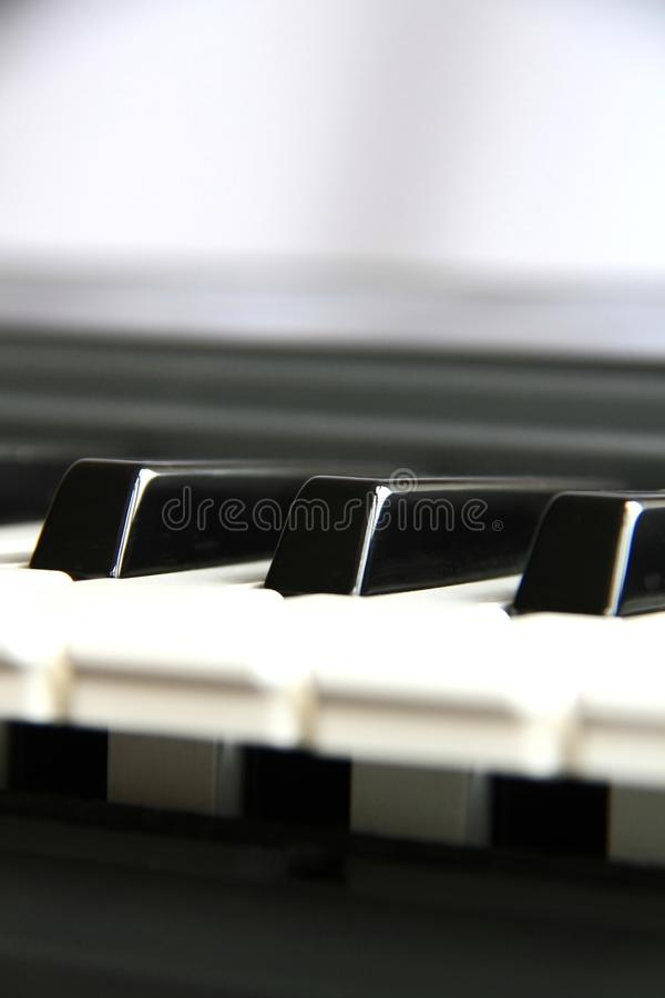 Musical instrument 5 royalty free stock photo
