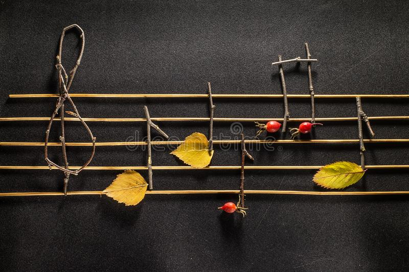 Musical notes conception. Wooden musical notes and leaves. stock photography