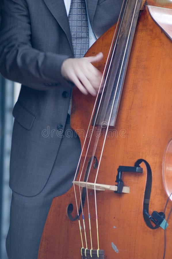 Download Musician stock photo. Image of close, classical, strum - 2601906