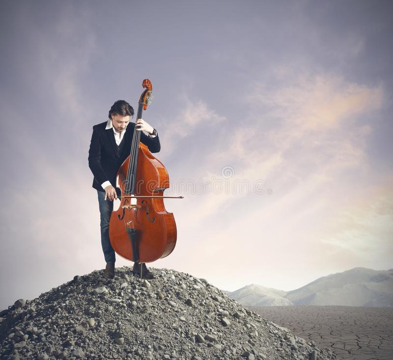 Musician playing bass royalty free stock photo