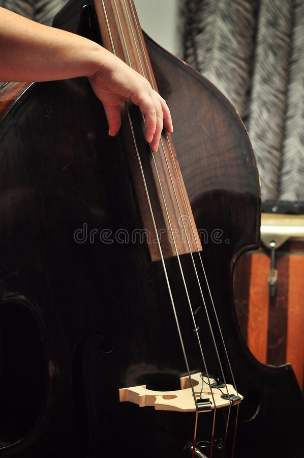 Musician playing cello royalty free stock images
