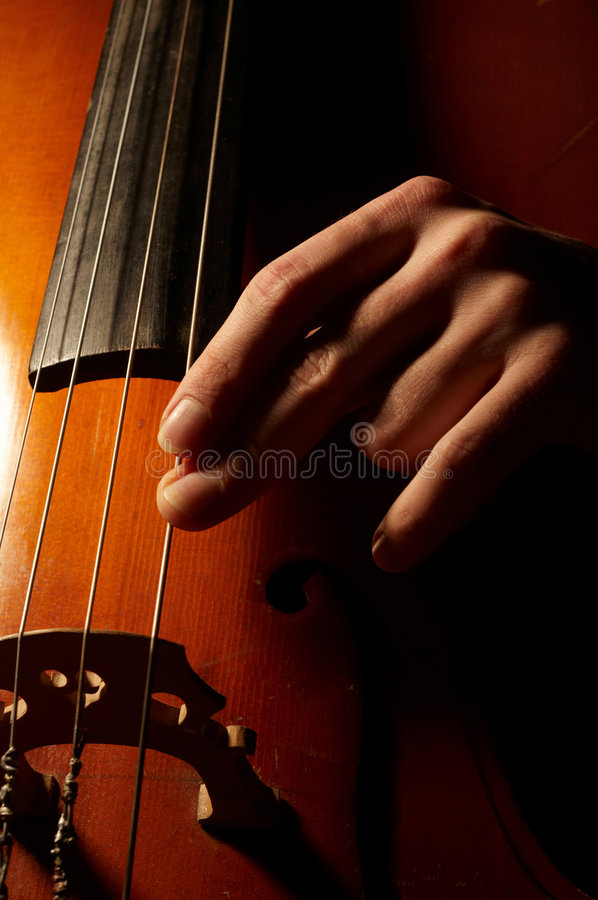Musician playing contrabass. Close-up photo of musician playing contrabass stock image