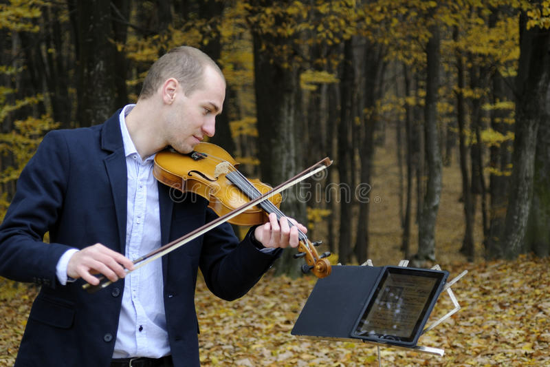 Musician playing at instrument royalty free stock photography