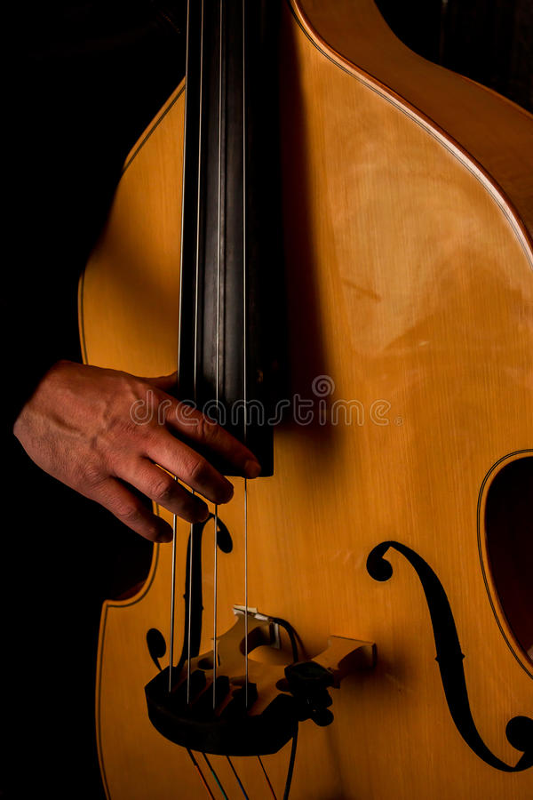 Musician plays the double bass. The musician plays the double bass. The light tone color of the bass royalty free stock photos