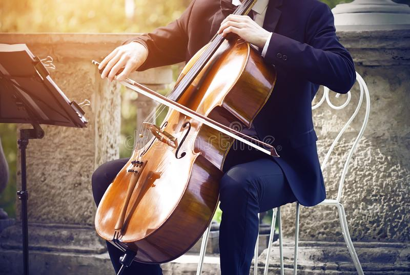 Musician in a suit sitting on a white chair and playing on cello stock image