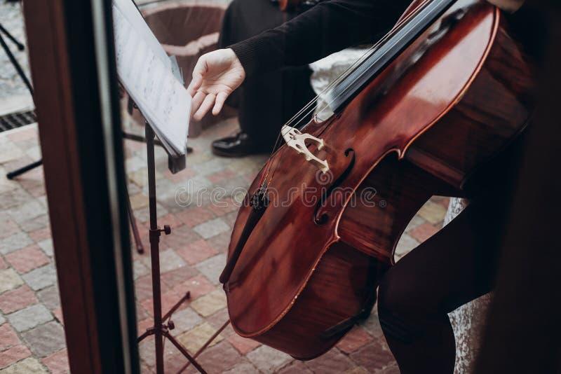 Musicien jouant sur la contrebasse à la réception de mariage de luxe stri photo stock