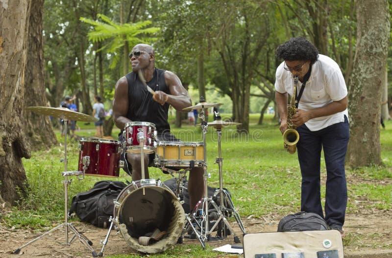 Musicien populaire de rue chantant en parc public photo stock