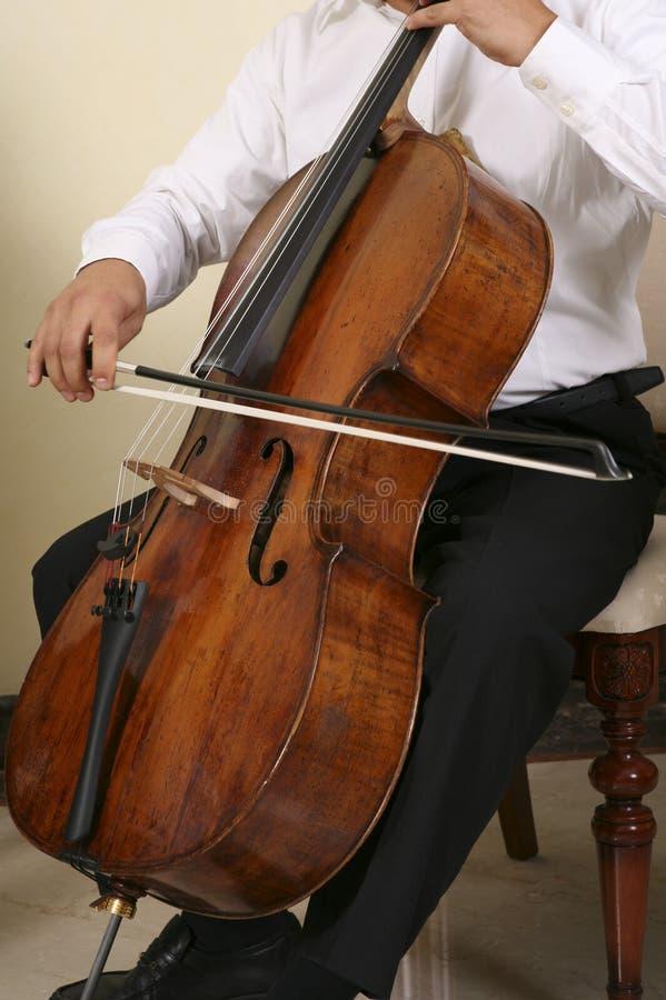 Musicien professionnel photos libres de droits