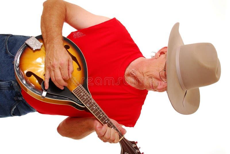 Musicista all'antica 17 del paese immagine stock