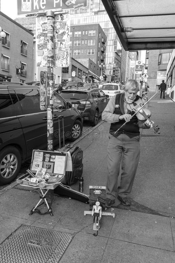 Musicus het spelen viool op de straat stock afbeeldingen