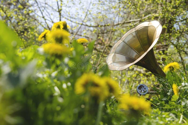 Musik bland blommorna arkivbild
