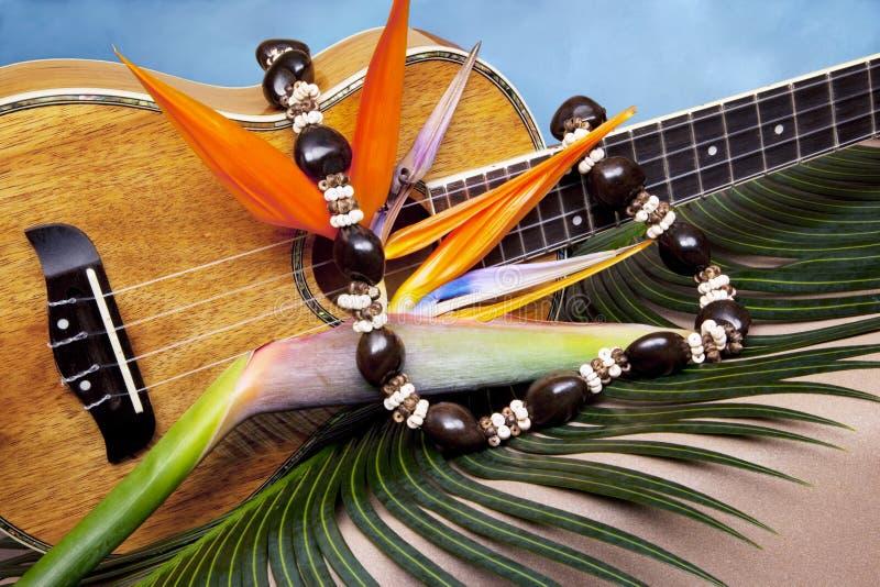 Musik im Paradies stockfotografie
