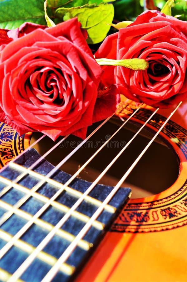 Musik och passion royaltyfria bilder