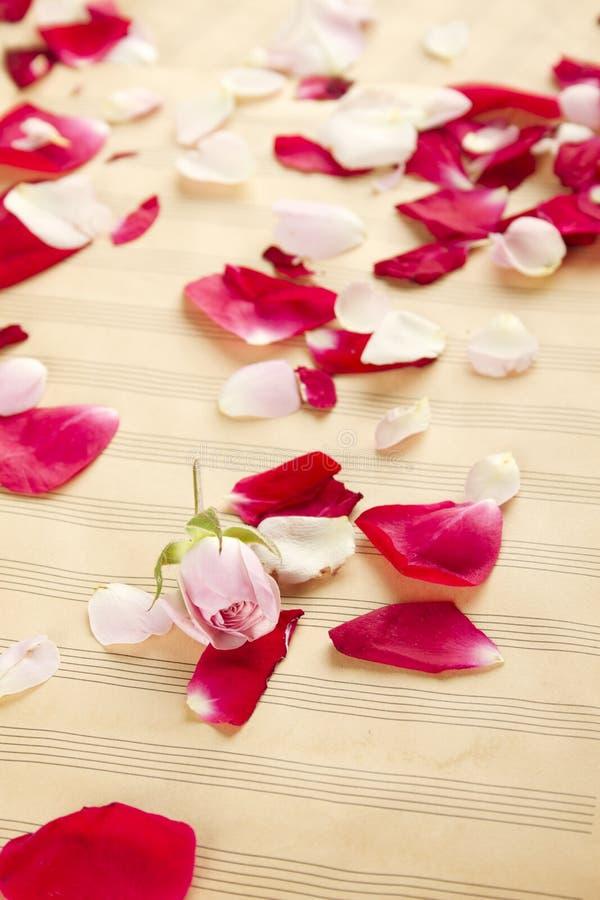Musik und Romance stockfotografie