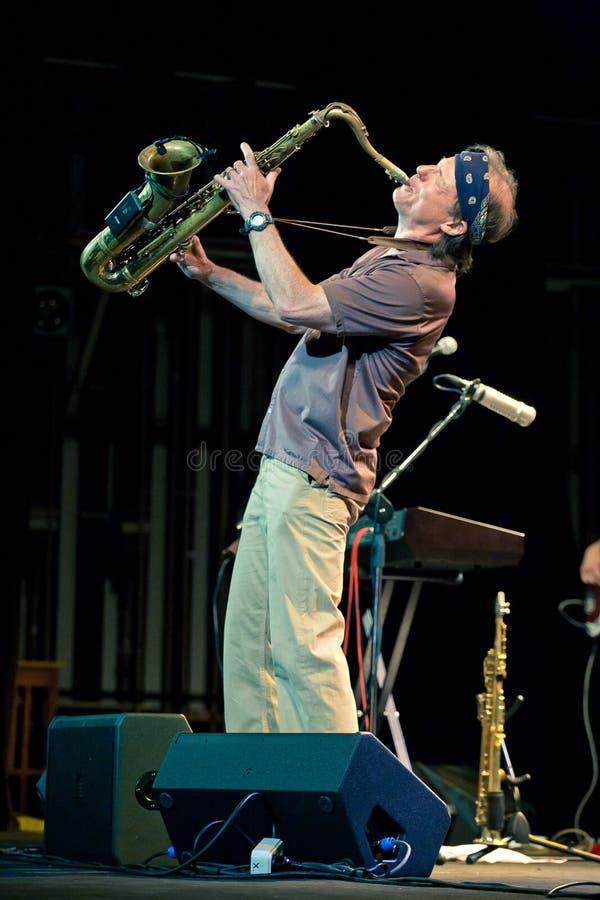 Musikalisches Projekt Bill Evans Soulgrass der Leistung lizenzfreies stockbild