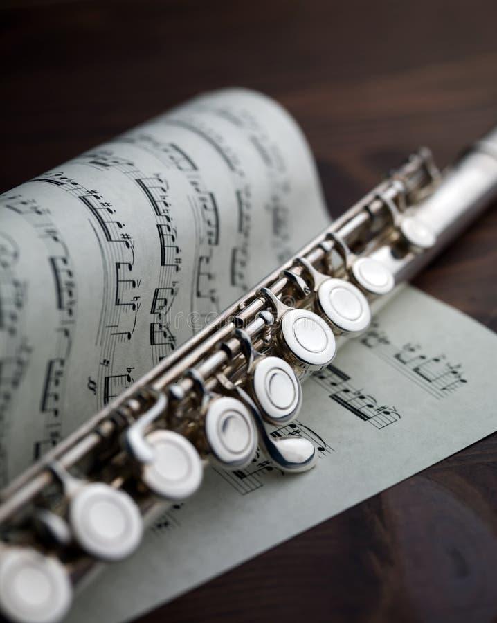 musikalisk ställning för flöjt fotografering för bildbyråer