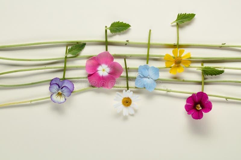 Musikanmärkningar av blommor royaltyfria foton