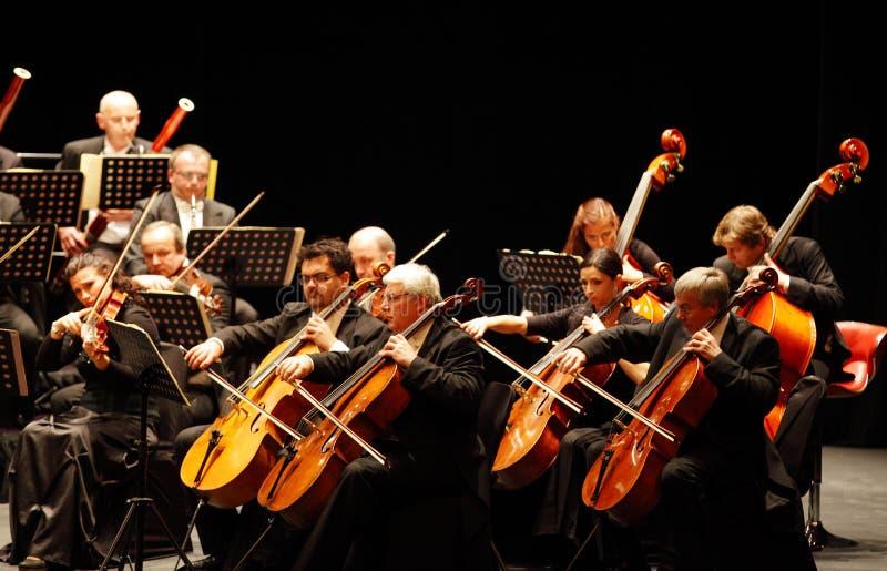 Musiker som spelar fiolen, Prague kammarorkester arkivbilder