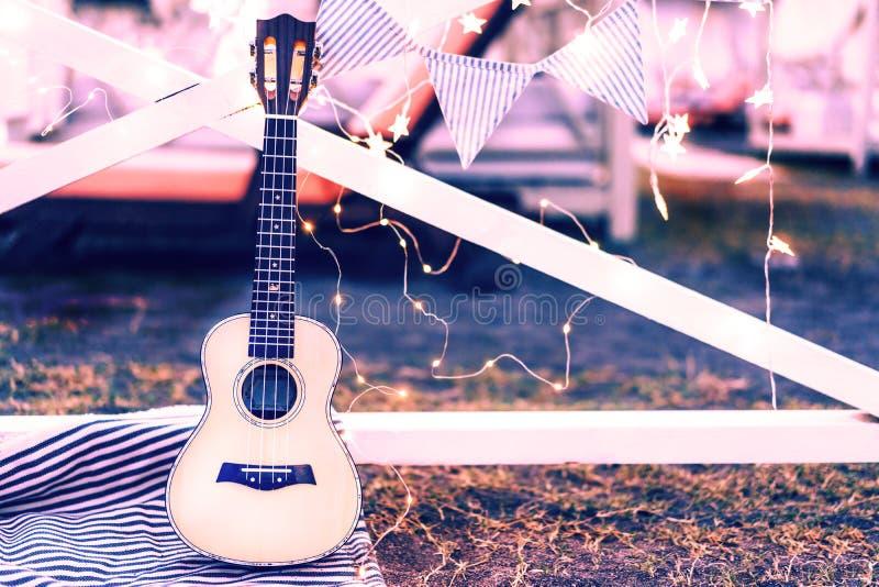 Musikinstrumentgitarrukulele royaltyfri foto