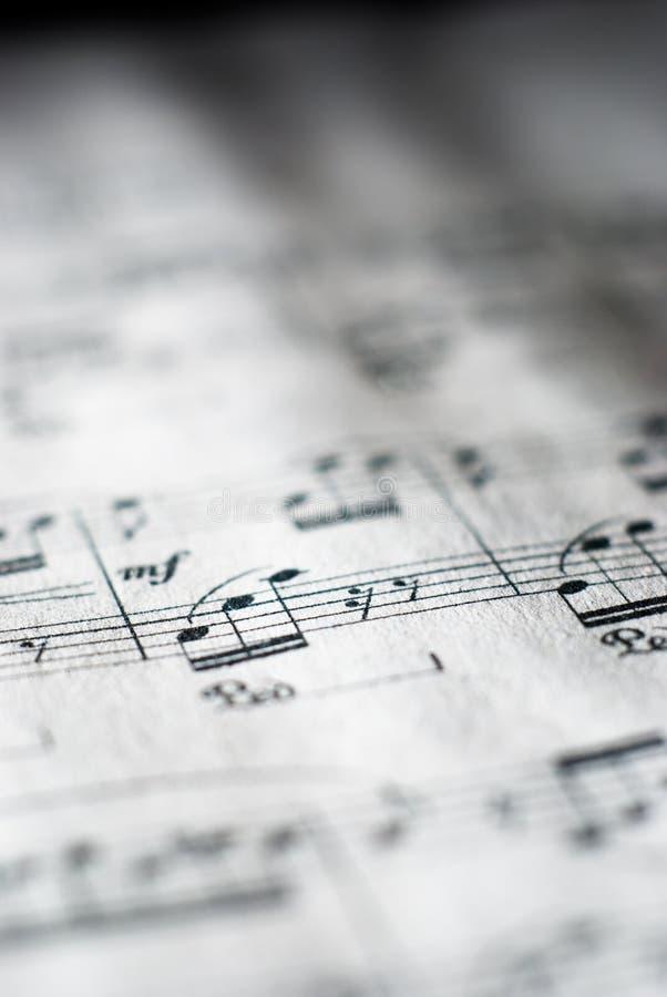 Musique de feuille en noir et blanc photos libres de droits