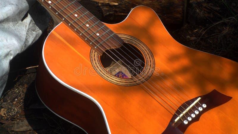 Musique de forêt image libre de droits