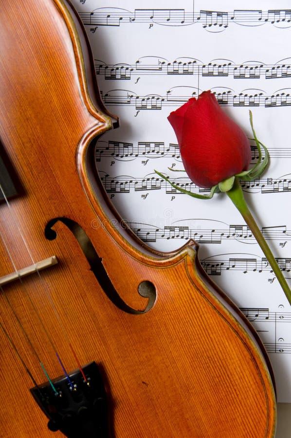 Musique de violon, de rose et de feuille photographie stock