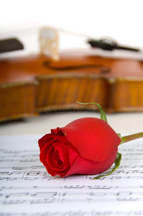 Musique de violon, de rose et de feuille images stock