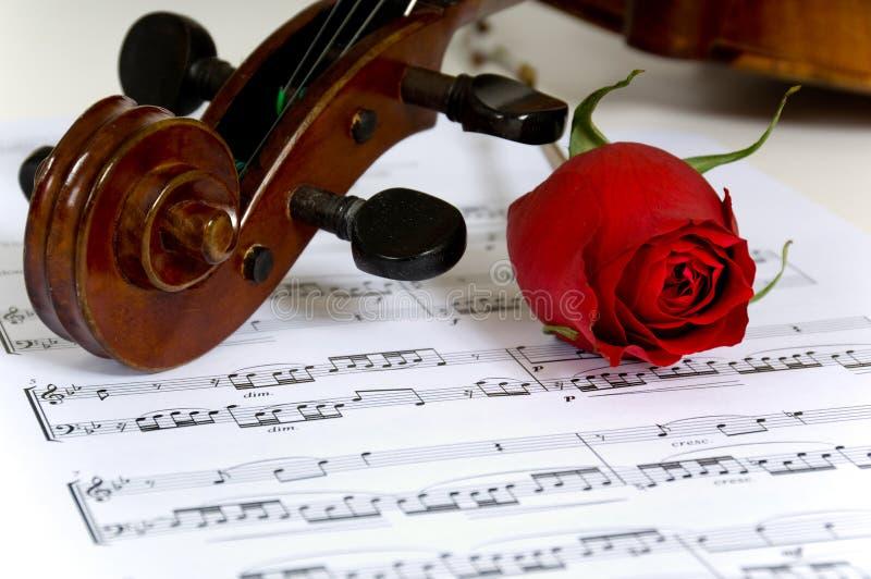 Musique de violon, de rose et de feuille photos stock
