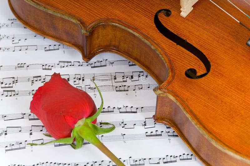 Musique de violon, de Rose et de feuille photo libre de droits