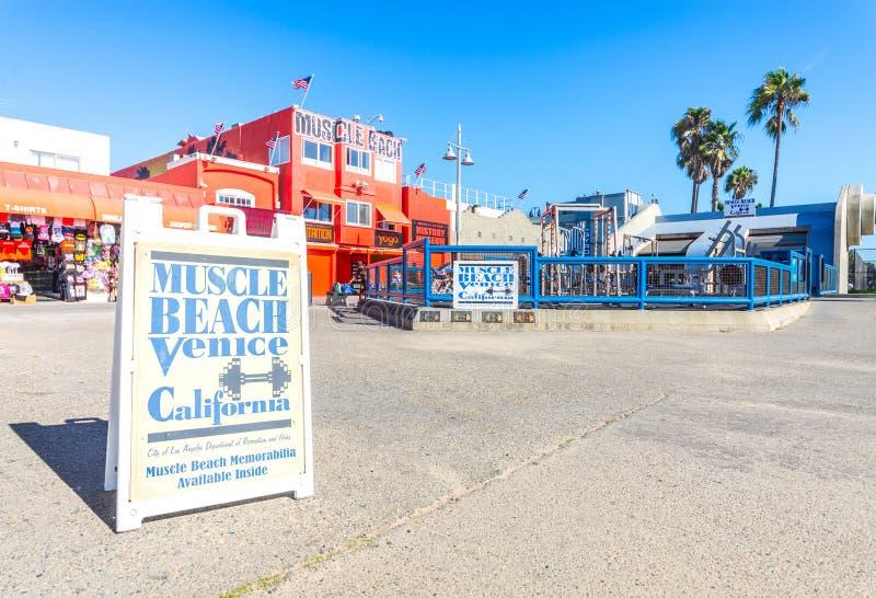 Muskel-Strand in Venedig-Strand lizenzfreie stockfotografie