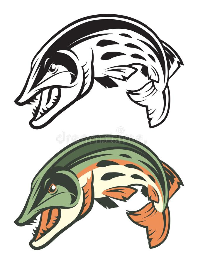 Muskellunge Fish Mascot in Color and Black & White stock illustration