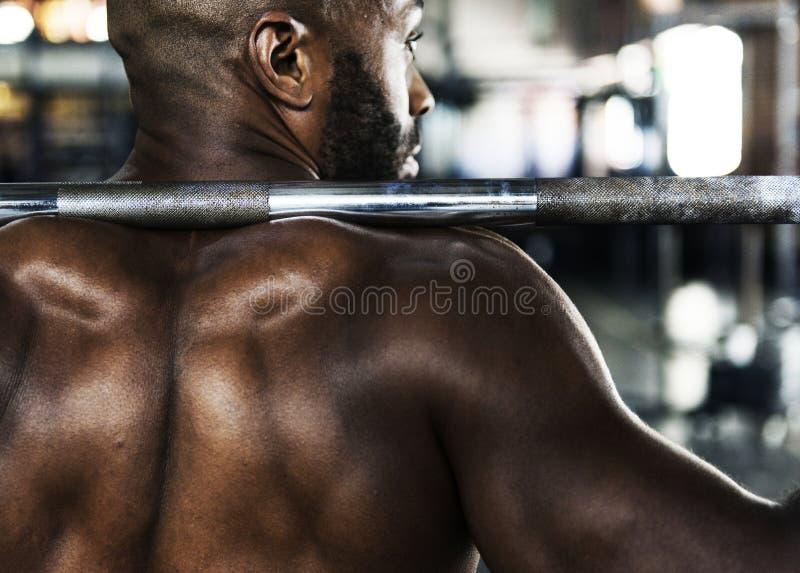 Muskelman på idrottshallen arkivbilder