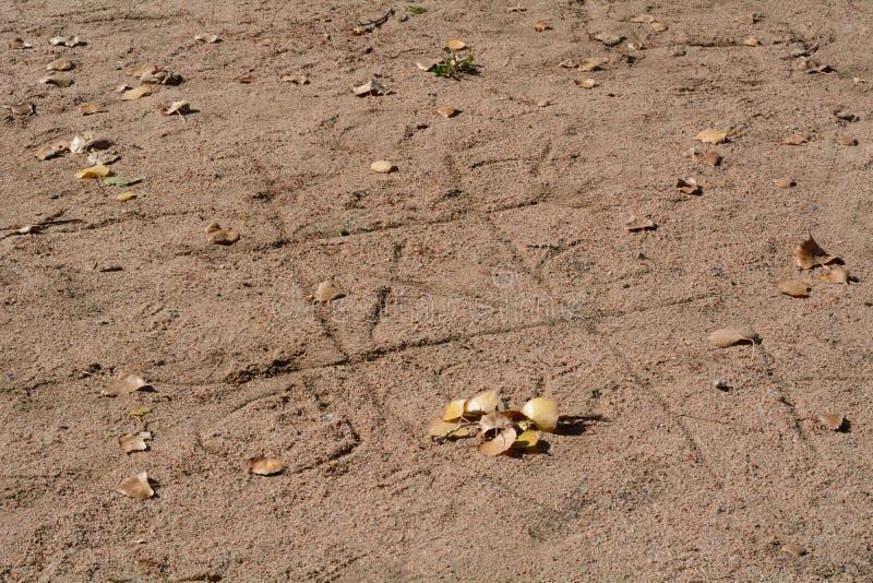 MuskelryckningTac Toe modigt skriftligt i sand fotografering för bildbyråer