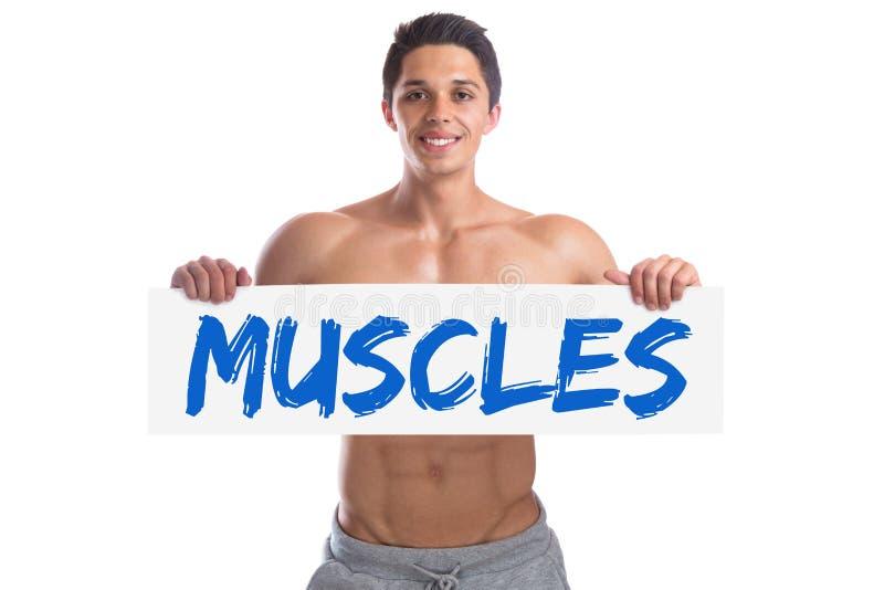 Muskler för byggnad för byggmästare för bodybuildingkroppsbyggarekropp tränga sig in st arkivbilder