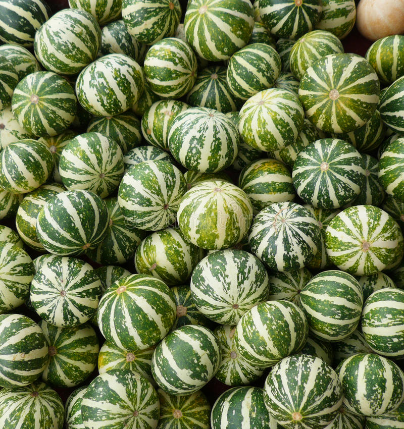 Download Muskmelon stock image. Image of health, isolated, fruit - 27957979