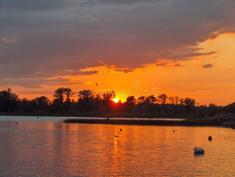 Muskoka-Sonnenuntergang lizenzfreie stockfotografie