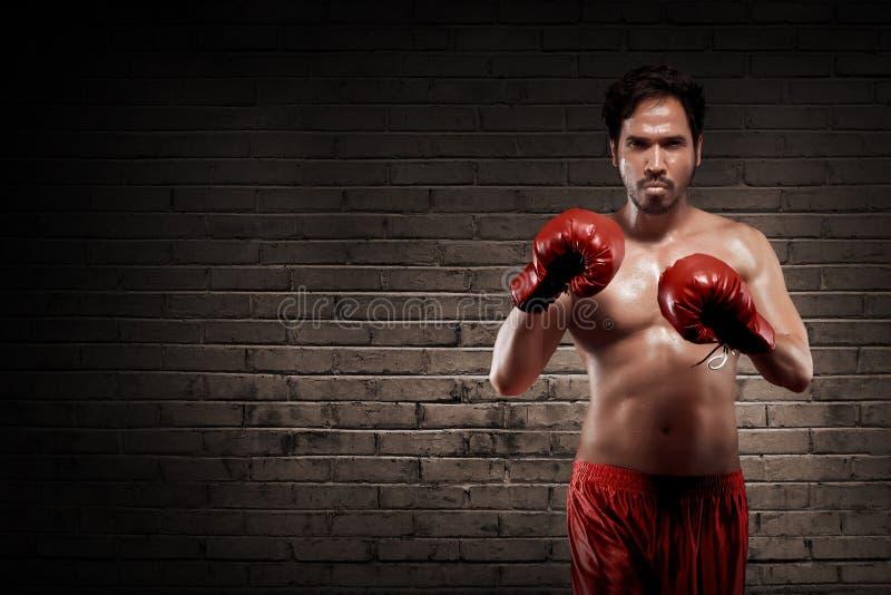 Muskulös asiatisk boxare med röda handskar arkivfoton