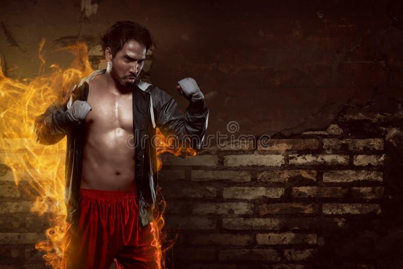 Muskulös asiatisk boxareman med sportswearen arkivbilder