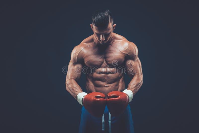 Muskulös boxare i studioskytte, på svart bakgrund royaltyfria bilder