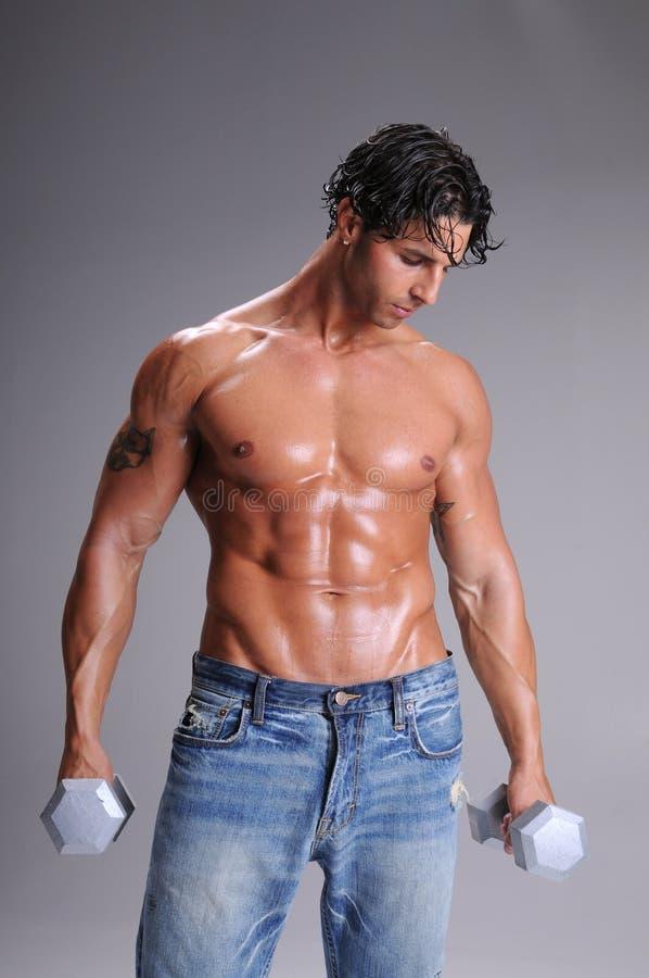 muskulös genomkörare för man royaltyfria foton