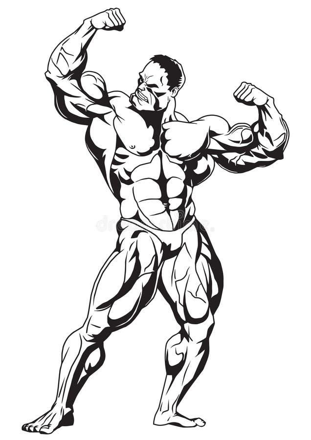 Muskulös kroppsbyggare stock illustrationer